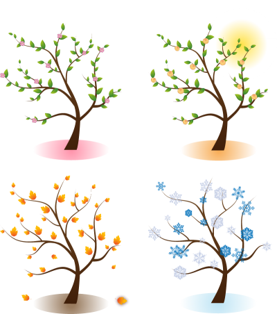 Transparent seasons. Download four free png