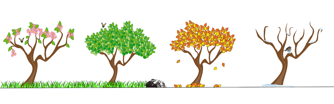 Transparent seasons sensational. Free clipart design season