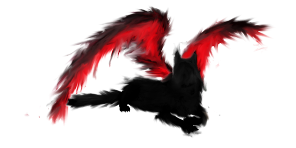 Transparent shadows red. Shadow of the winged