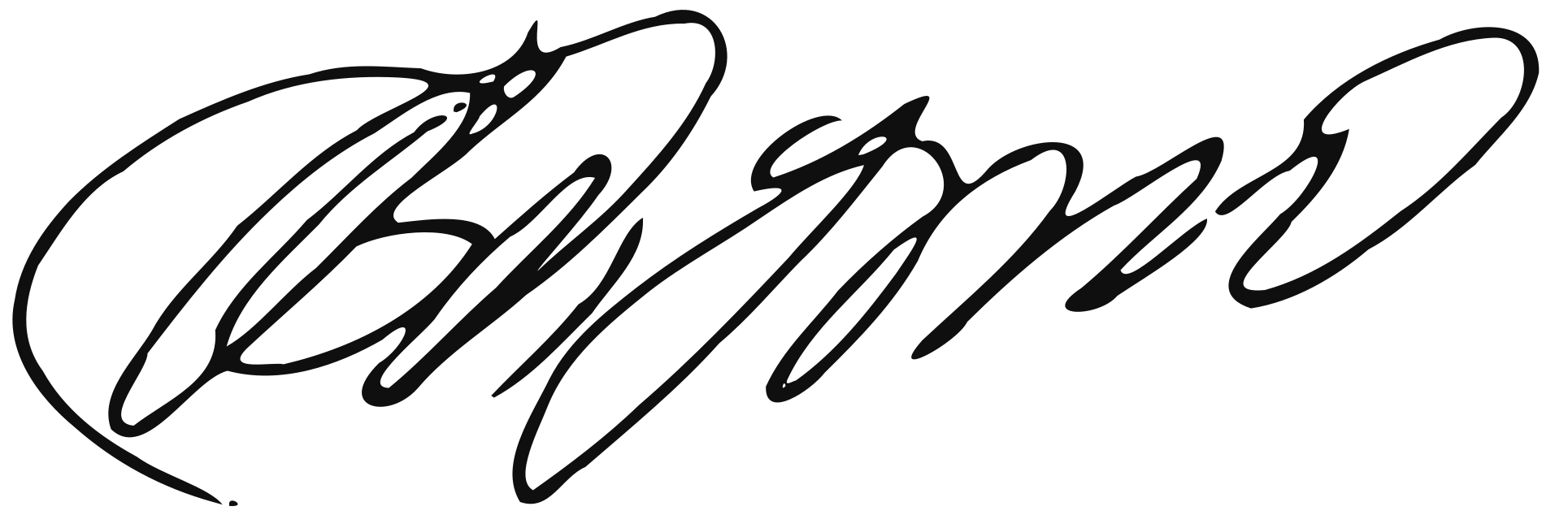 Transparent signatures bmp. File vladimir putin signature