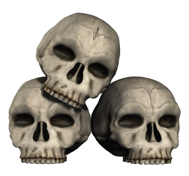Transparent skulls png gallery. Fossil clipart anthropology svg free library