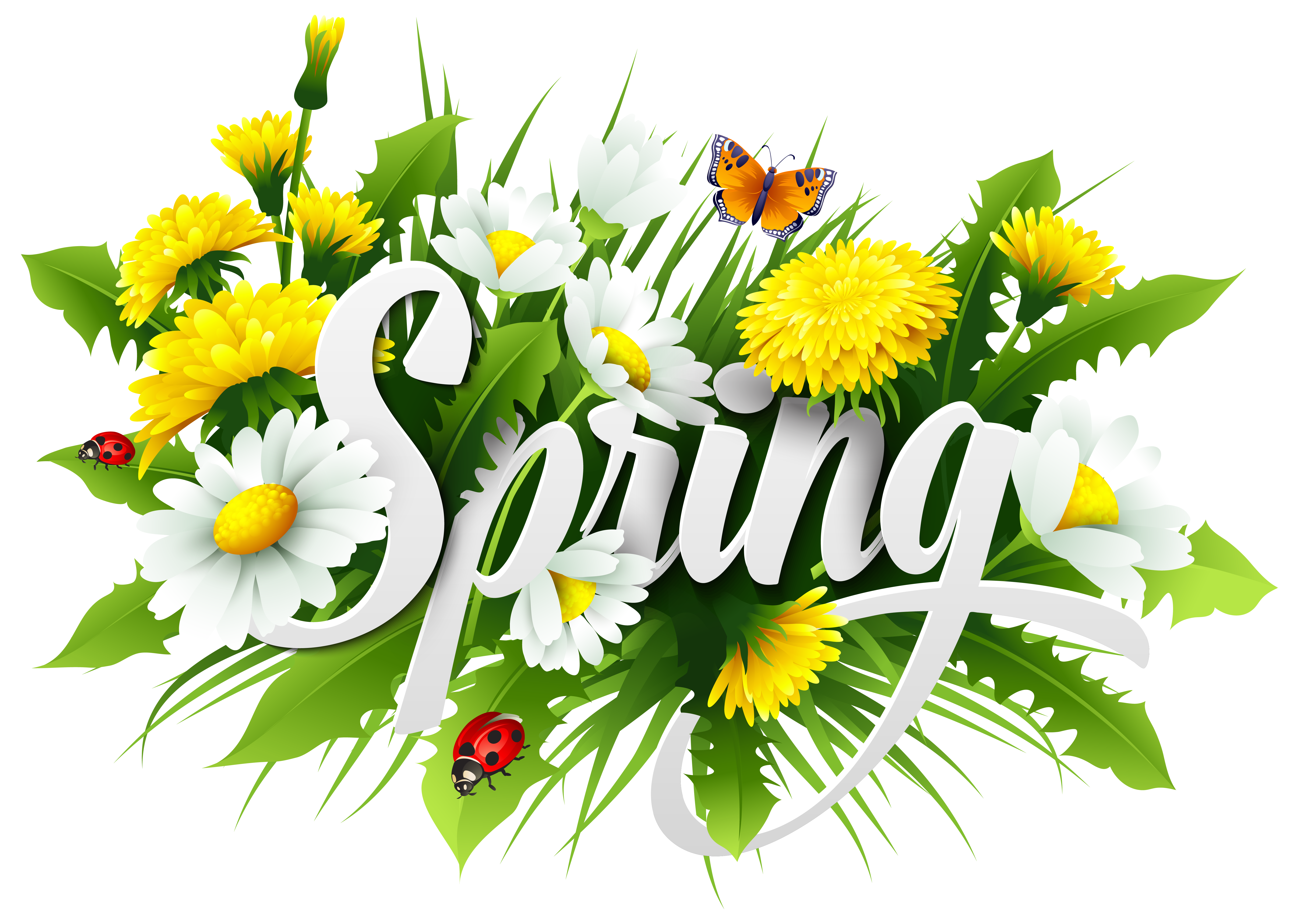 Transparent spring bouquet. Clip art others transprent