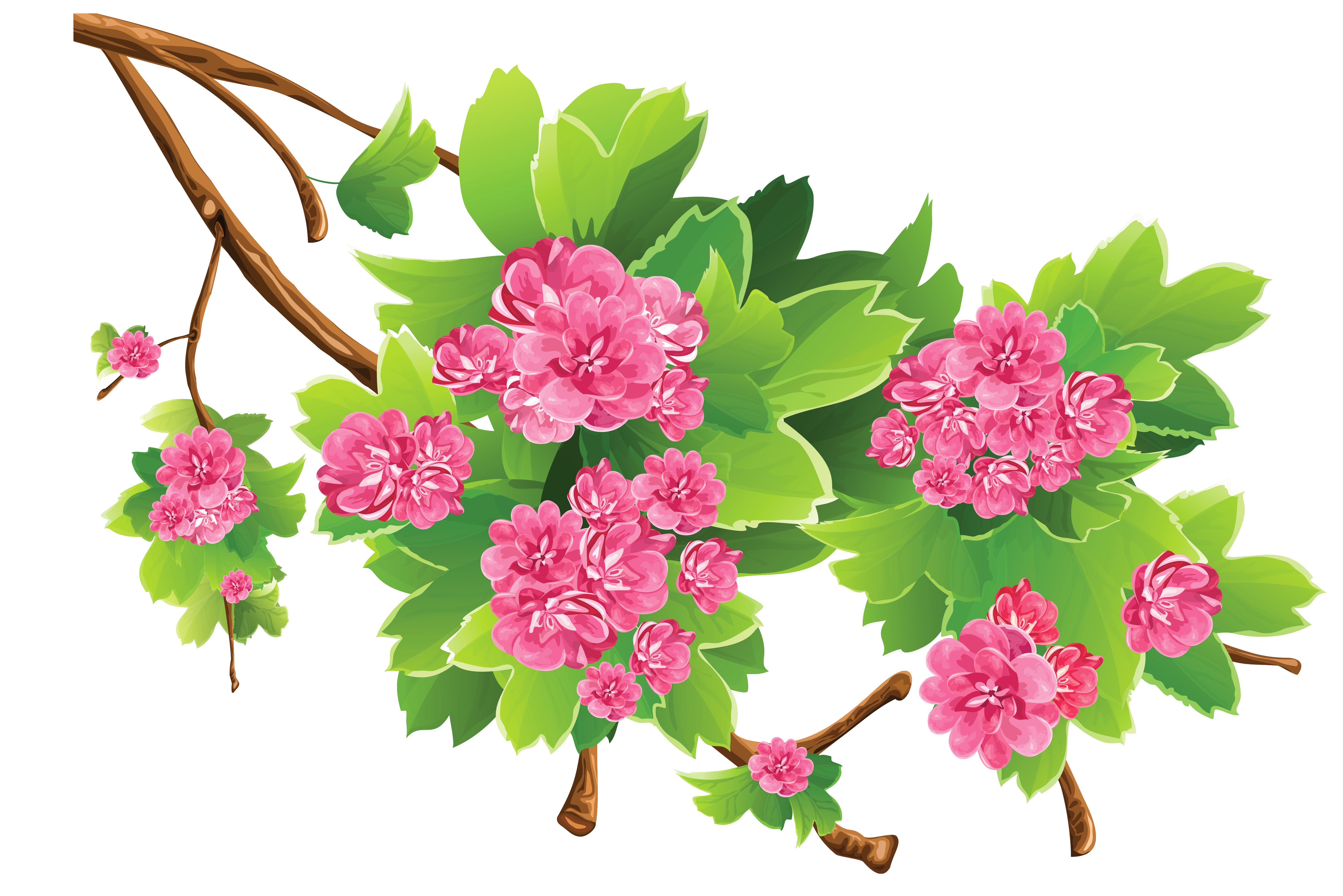 Vector bouquet spring. Background image library