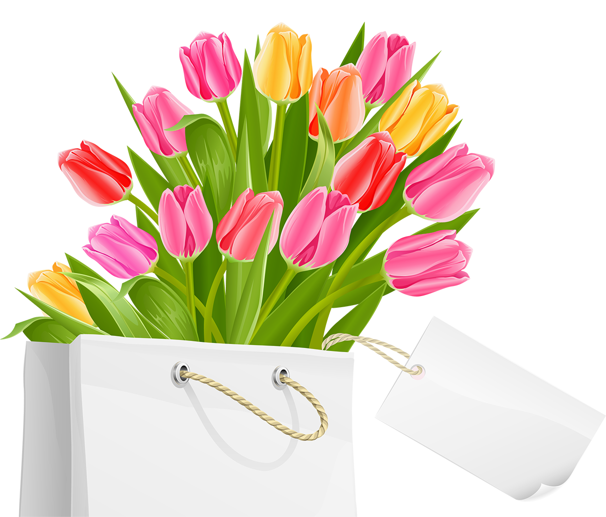 Transparent spring tulip. Bag with tulips png