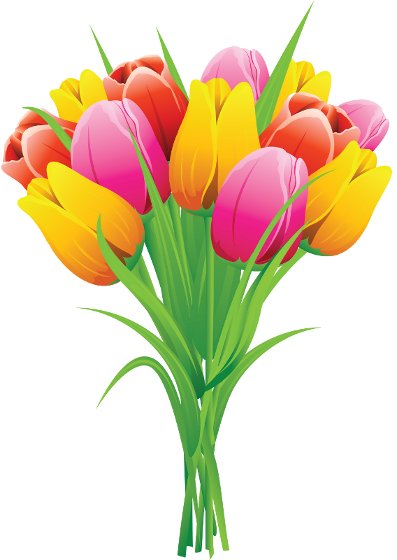 png clip art. Transparent spring tulip clipart freeuse library