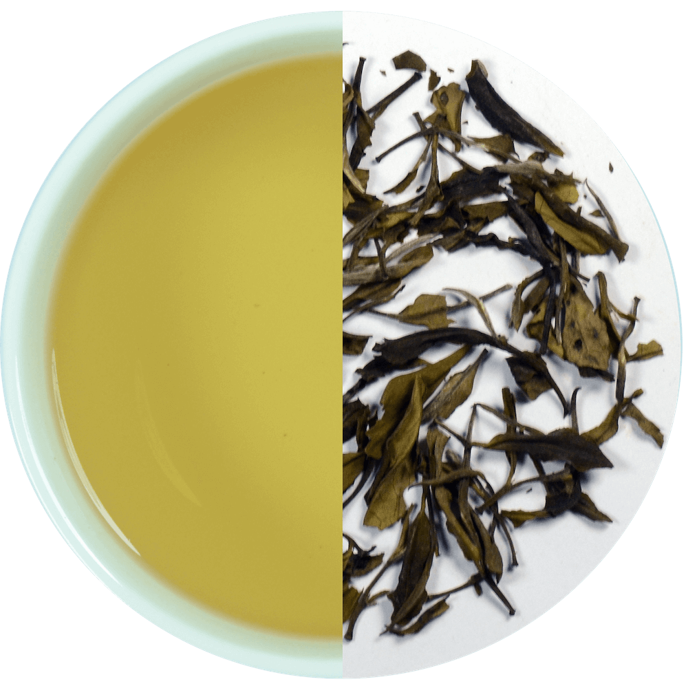Transparent tea oolong. Buy best ekta golden