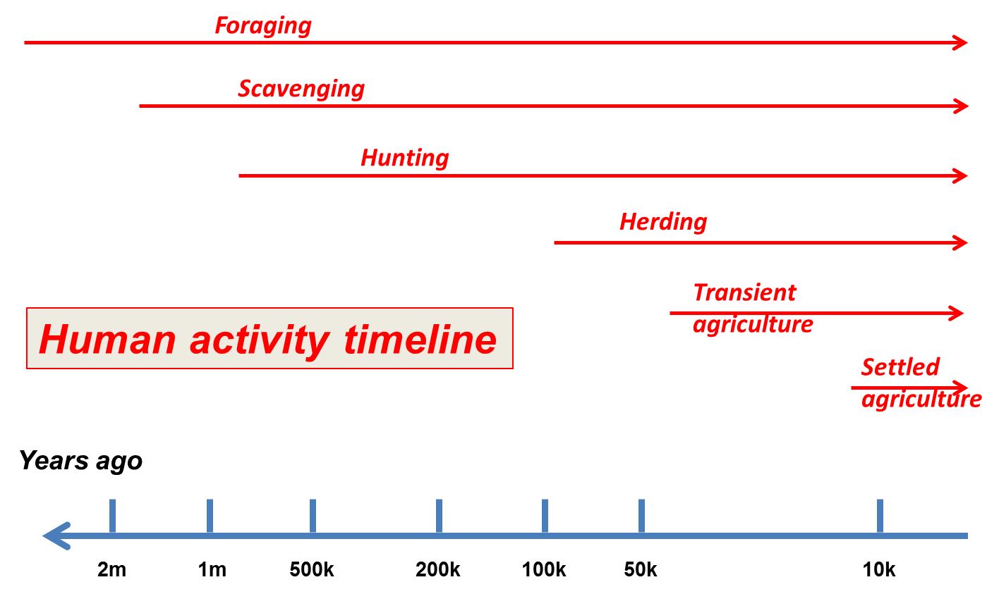 Transparent timeline activity. Generations on the