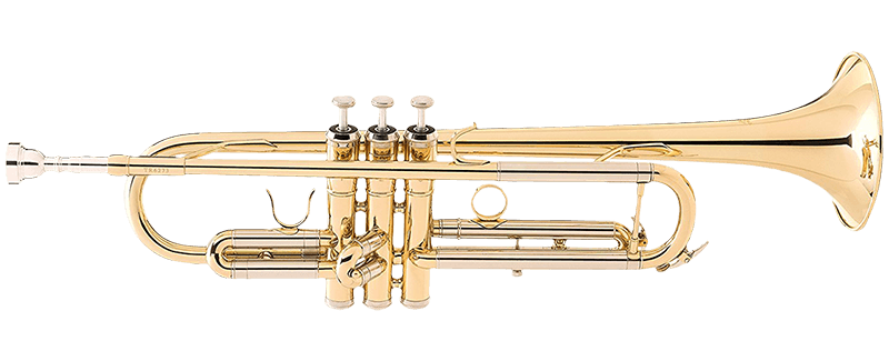 Transparent trumpet allora. The best trumpets for