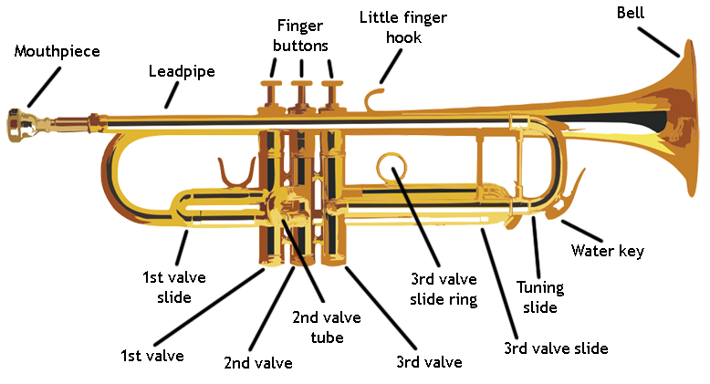 Transparent trumpet ancient. The musical instruments history