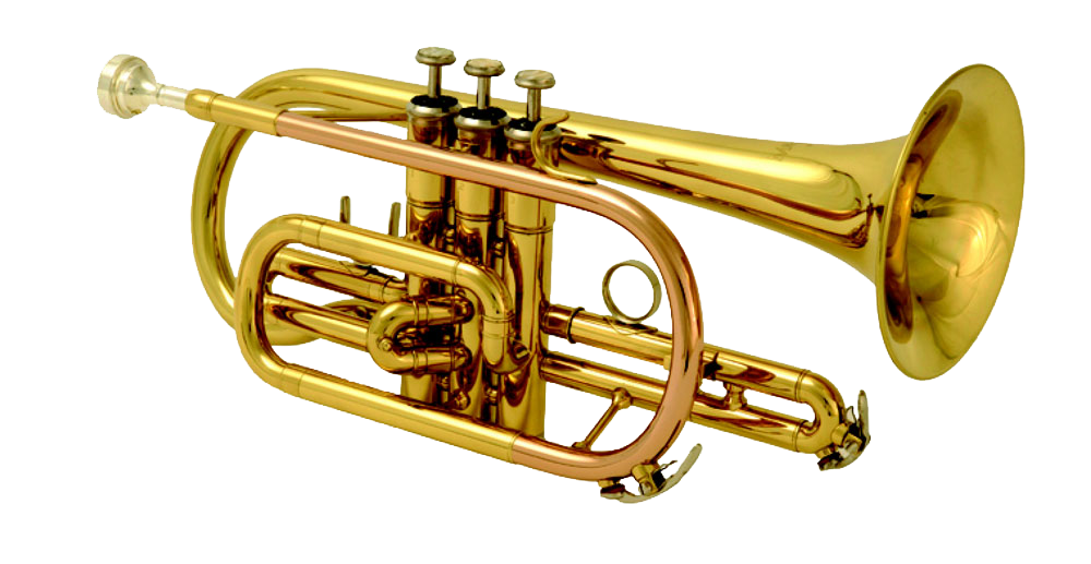 Transparent trumpet brass family. Allpng band file instrument