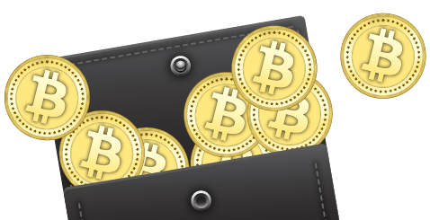 Transparent wallet bitcoin. A detailed comparison of
