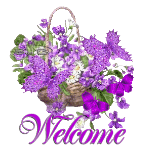 Transparent welcome flower. Image purple butterfly flowers