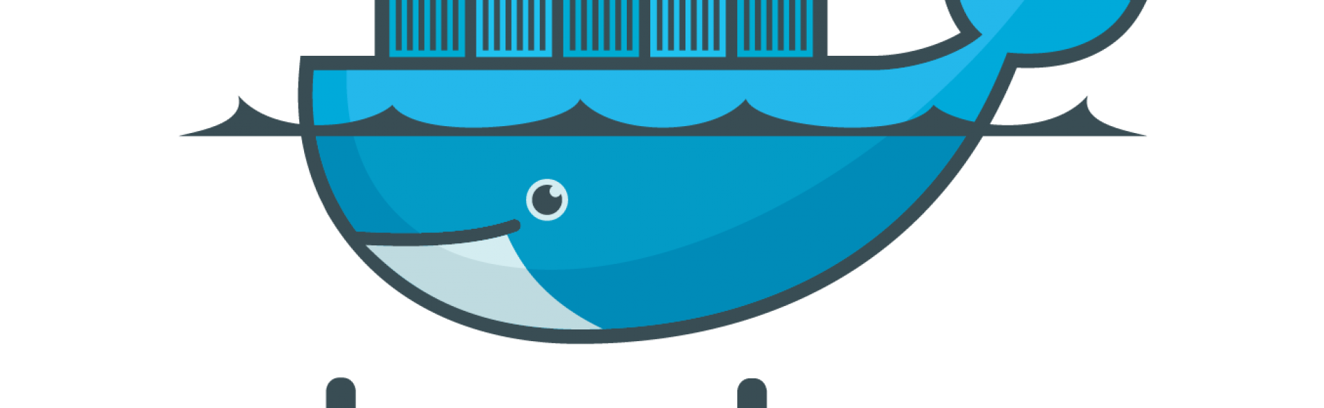 Transparent whale docker. Start your adventure with