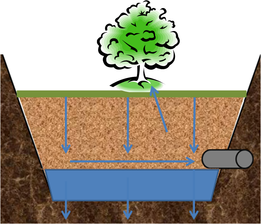 Tree and soil png. File trench schematic minnesota