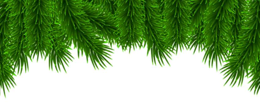 Christmas pine png. Border free images toppng
