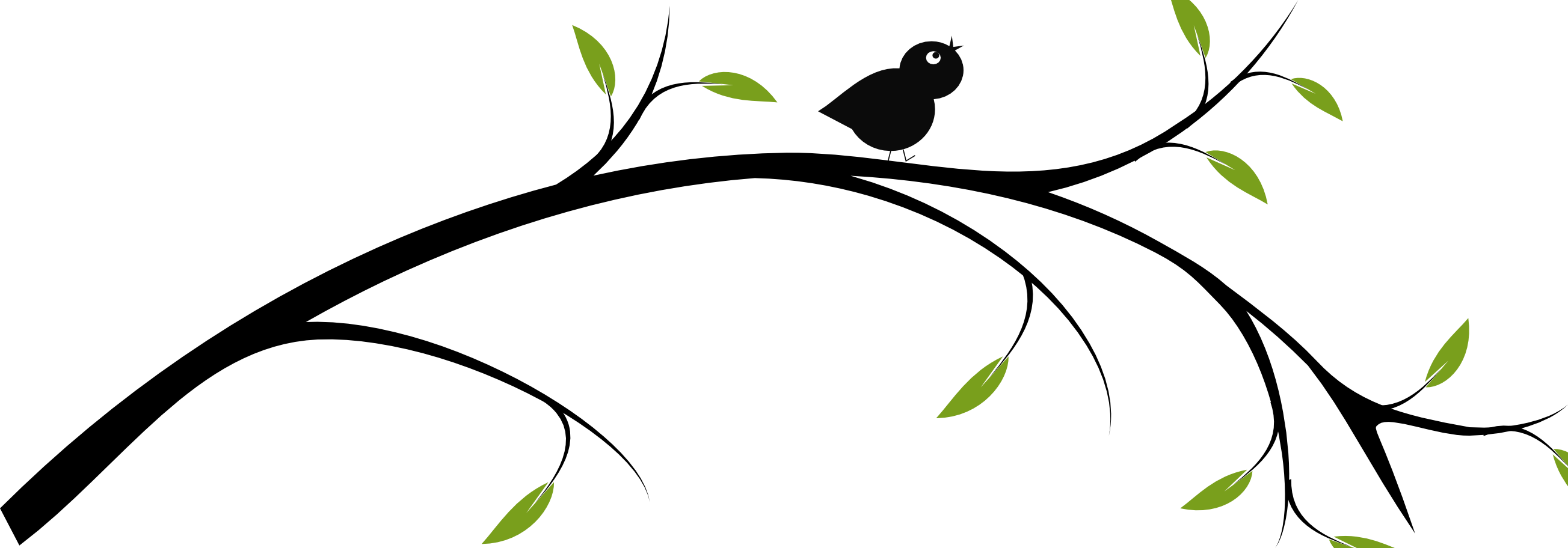 Tree branch png clipart. Birds on a clip
