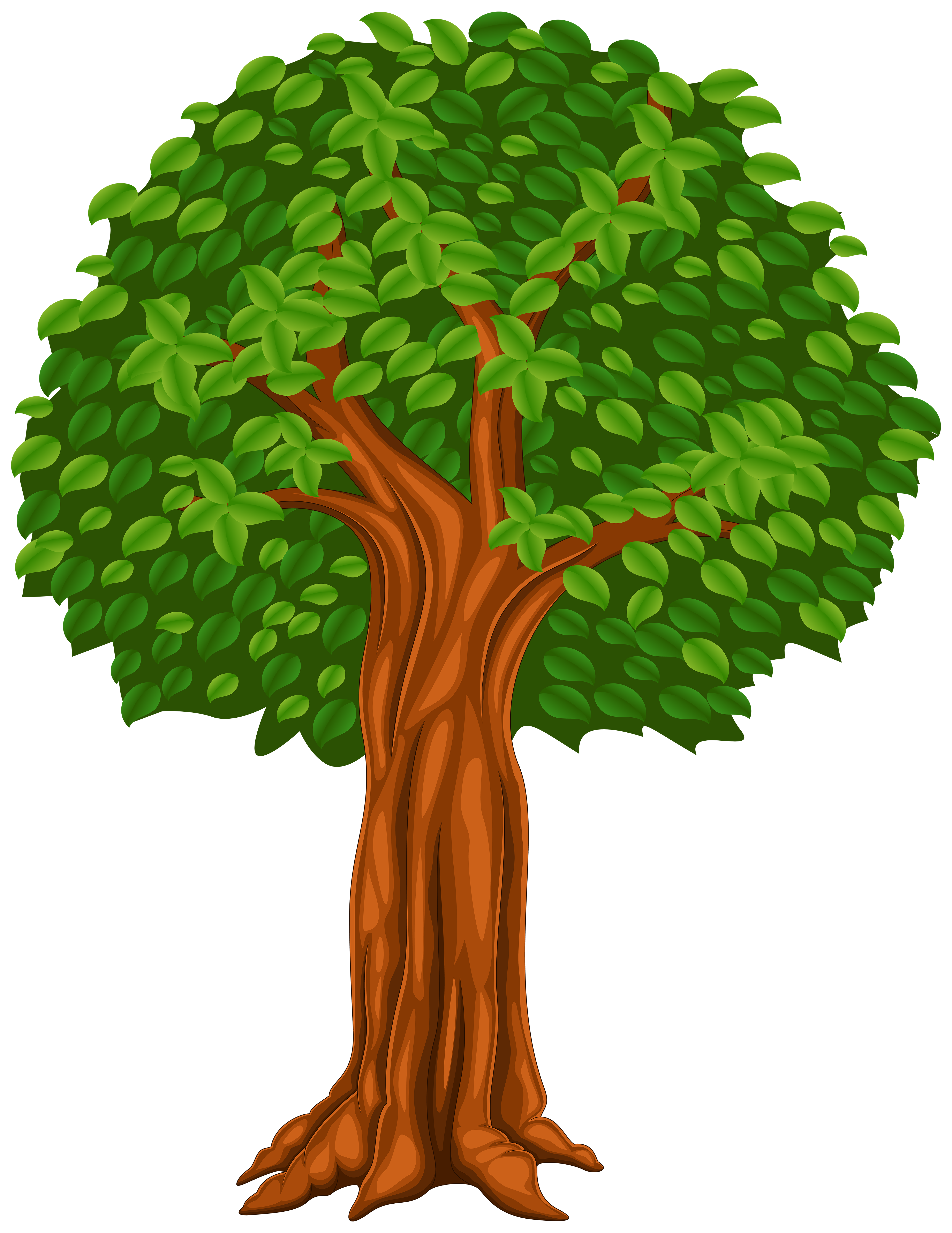 Clip art image gallery. Tree cartoon png clipart transparent stock