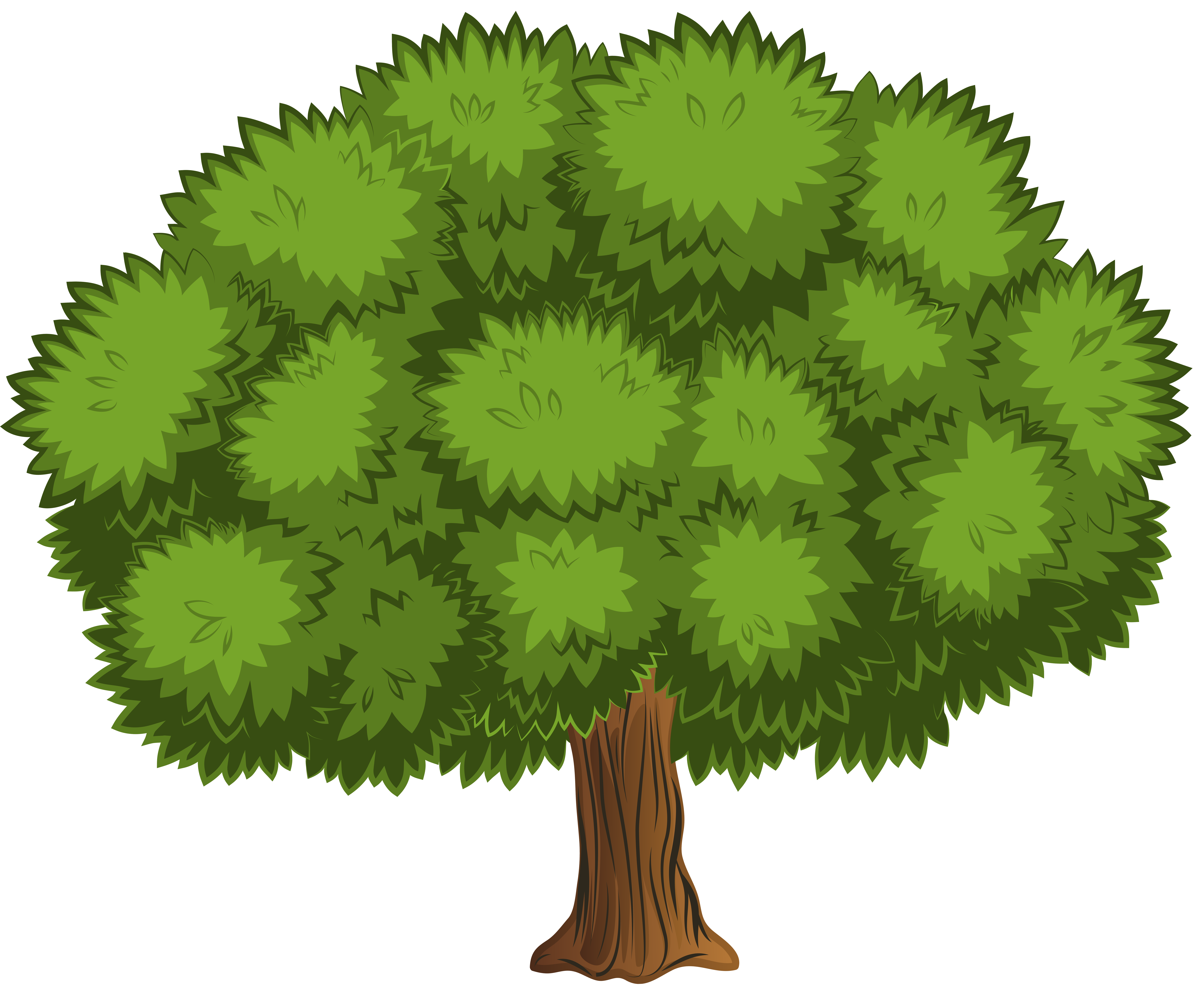 Trees clipart png. Large tree clip art