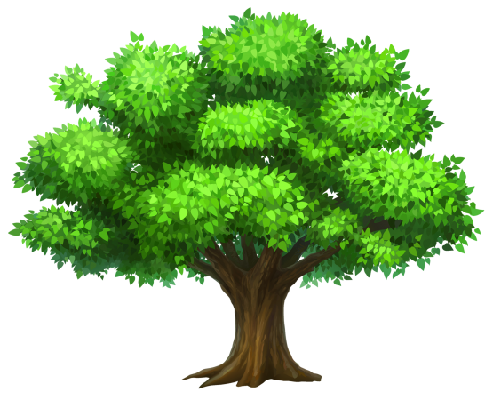 Trees vector png. Pine tree wallpaper high