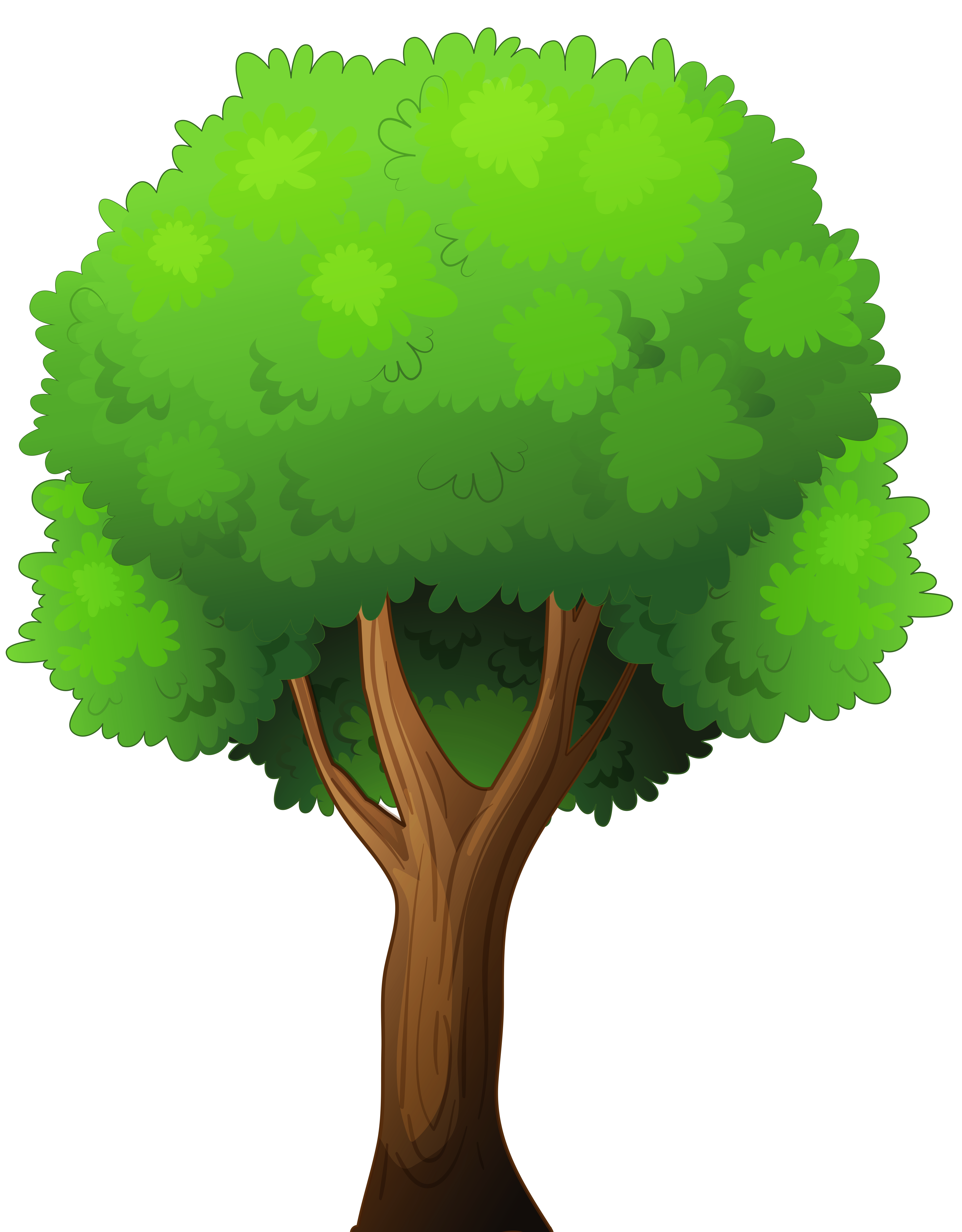 Tree clipart high resolution. Png clip art best