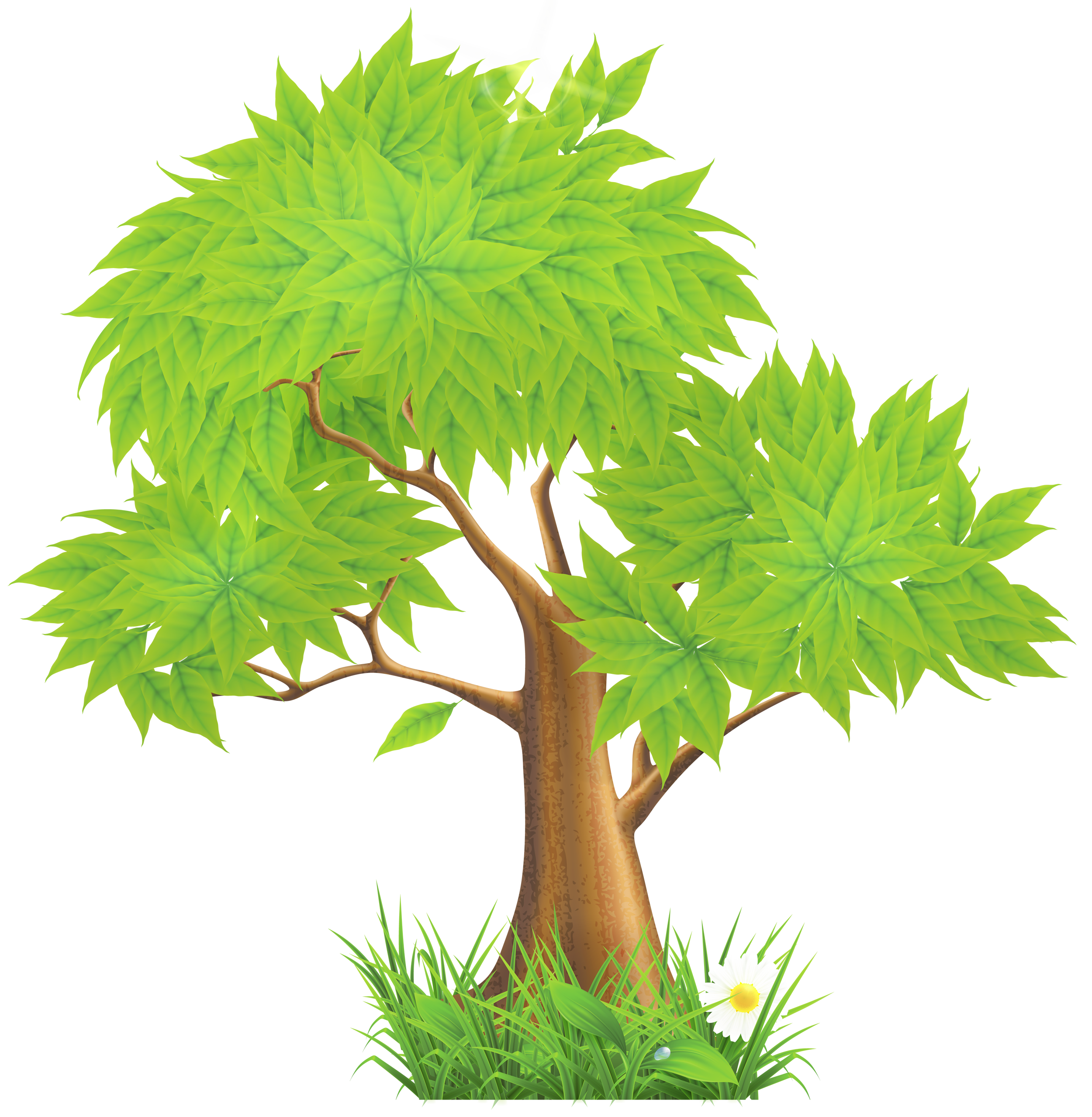 Tree clipart high resolution. Green painted png gallery