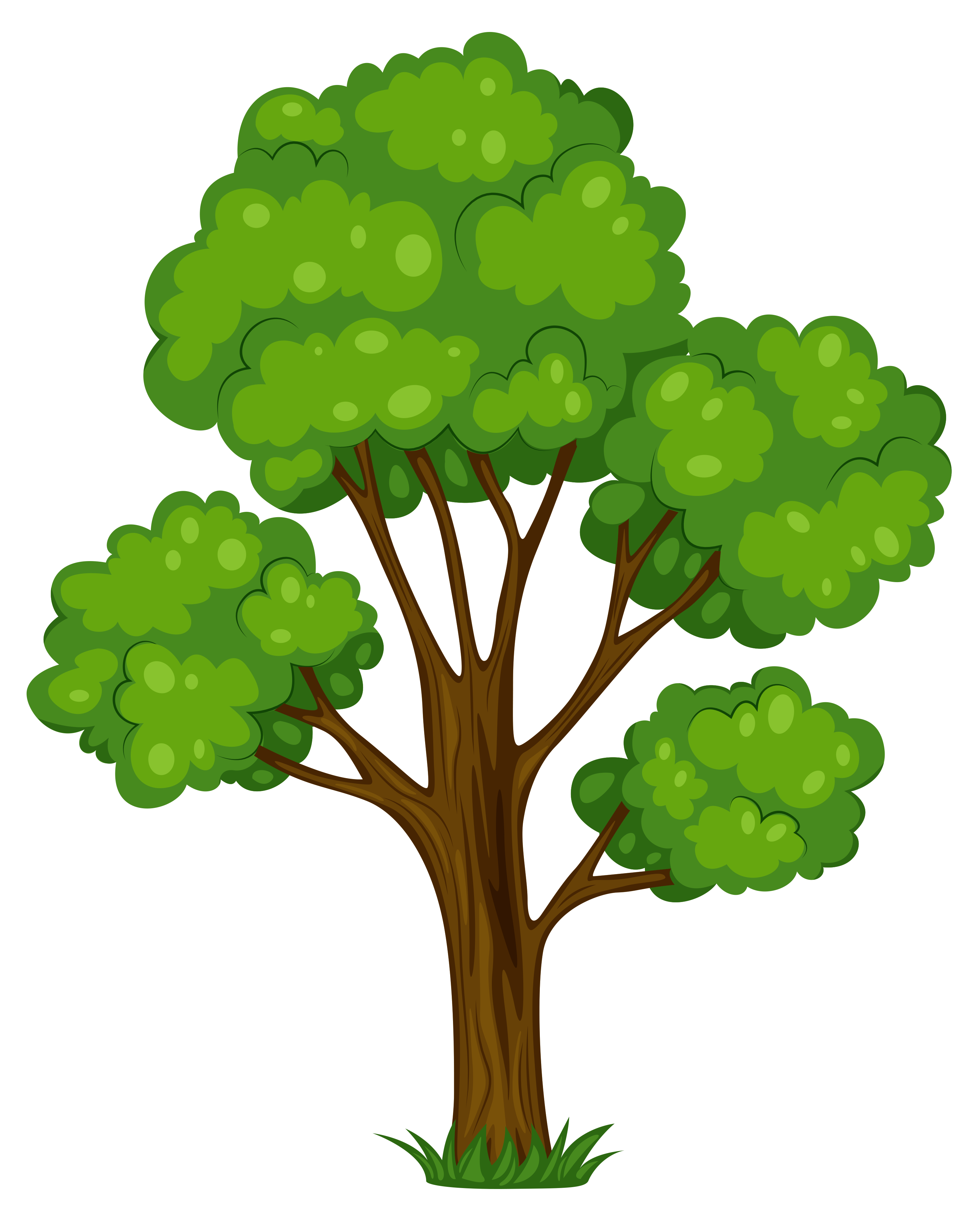 Tree illustration png. Painted green clipart picture