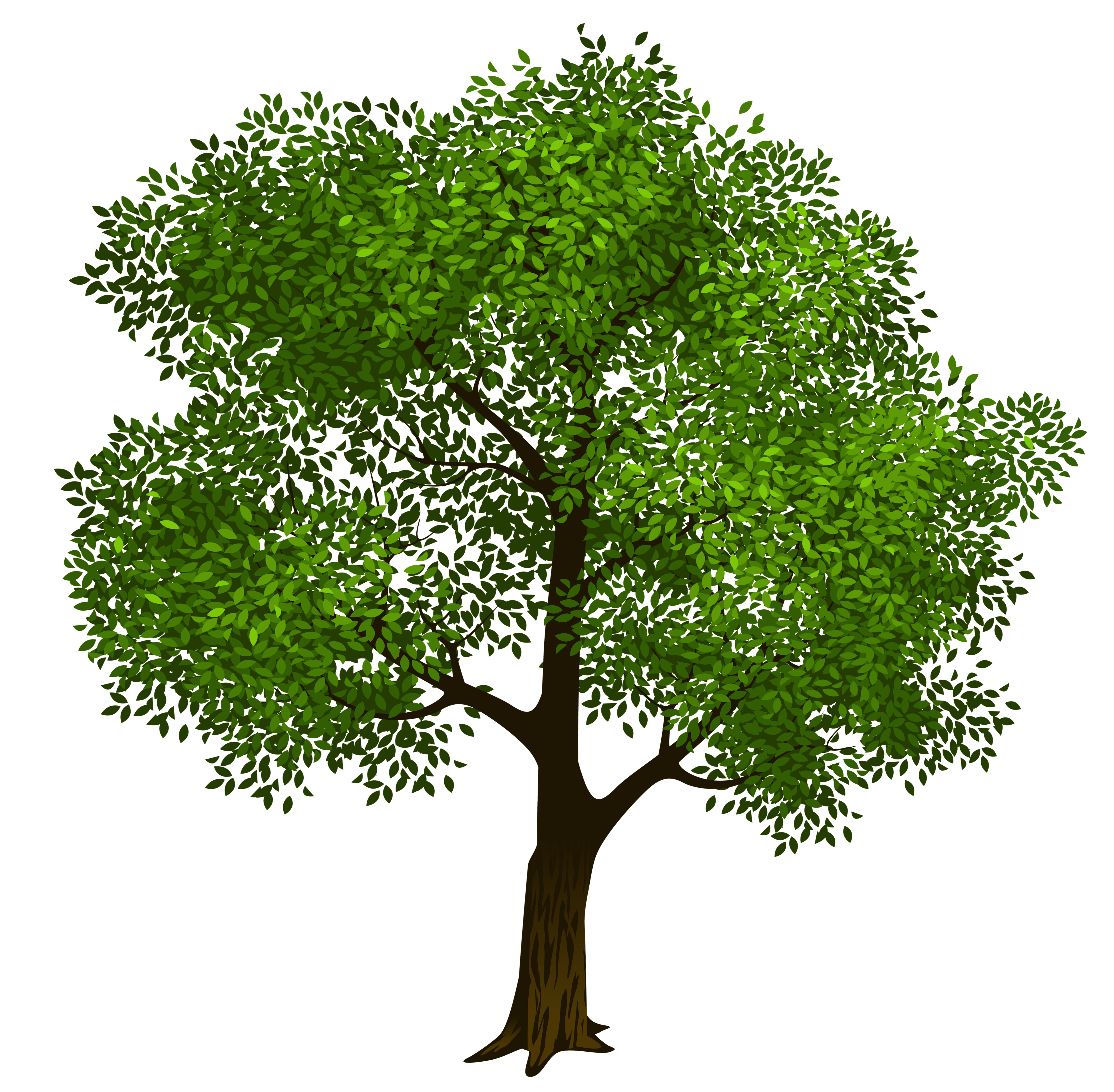 Tree clipart summer. Unique with circles for