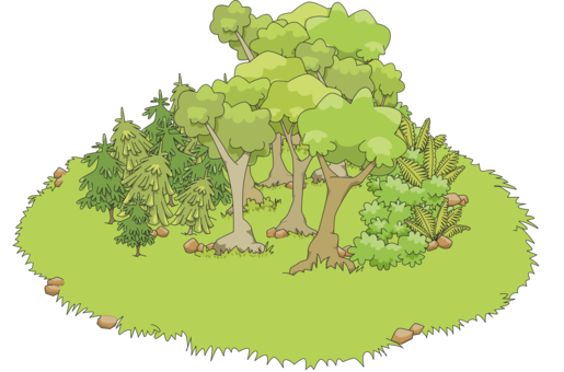 Tree clipart woodland. Forest cover forestry free