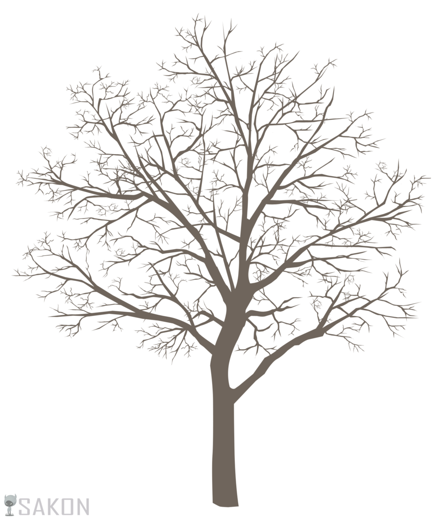 Trees drawing png. Collection of high