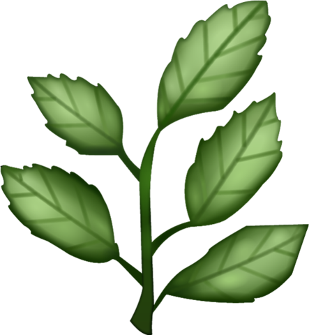 Tree emoji png. Download herb image in