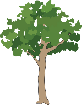 Tree illustration png. Icon small download free