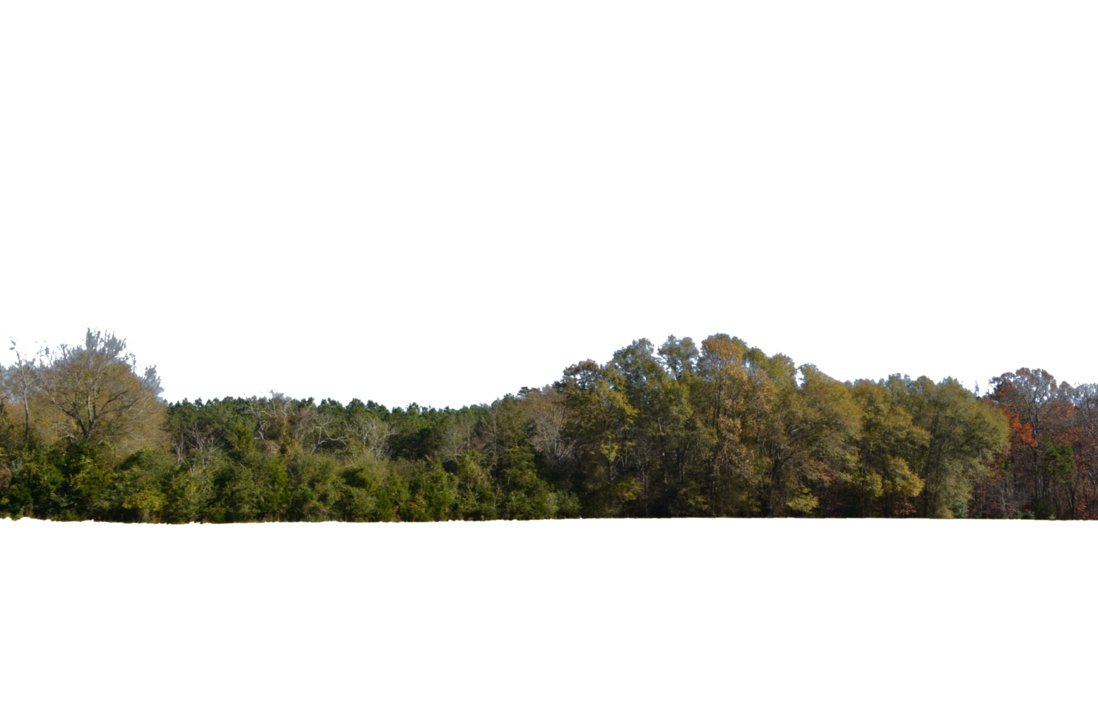 Tree line png. Rolling hill stock photo