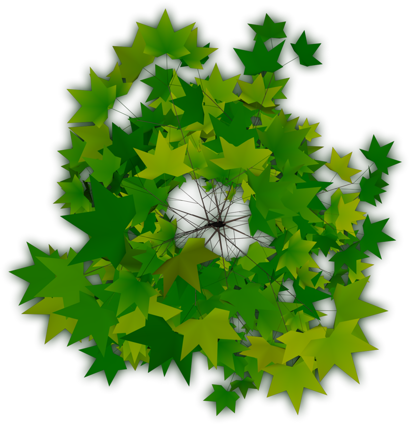 Trees plan png. Top tree transparent pictures
