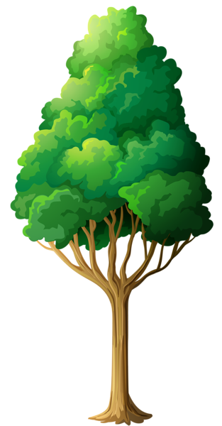 Tree png cartoon. Collection of clipart