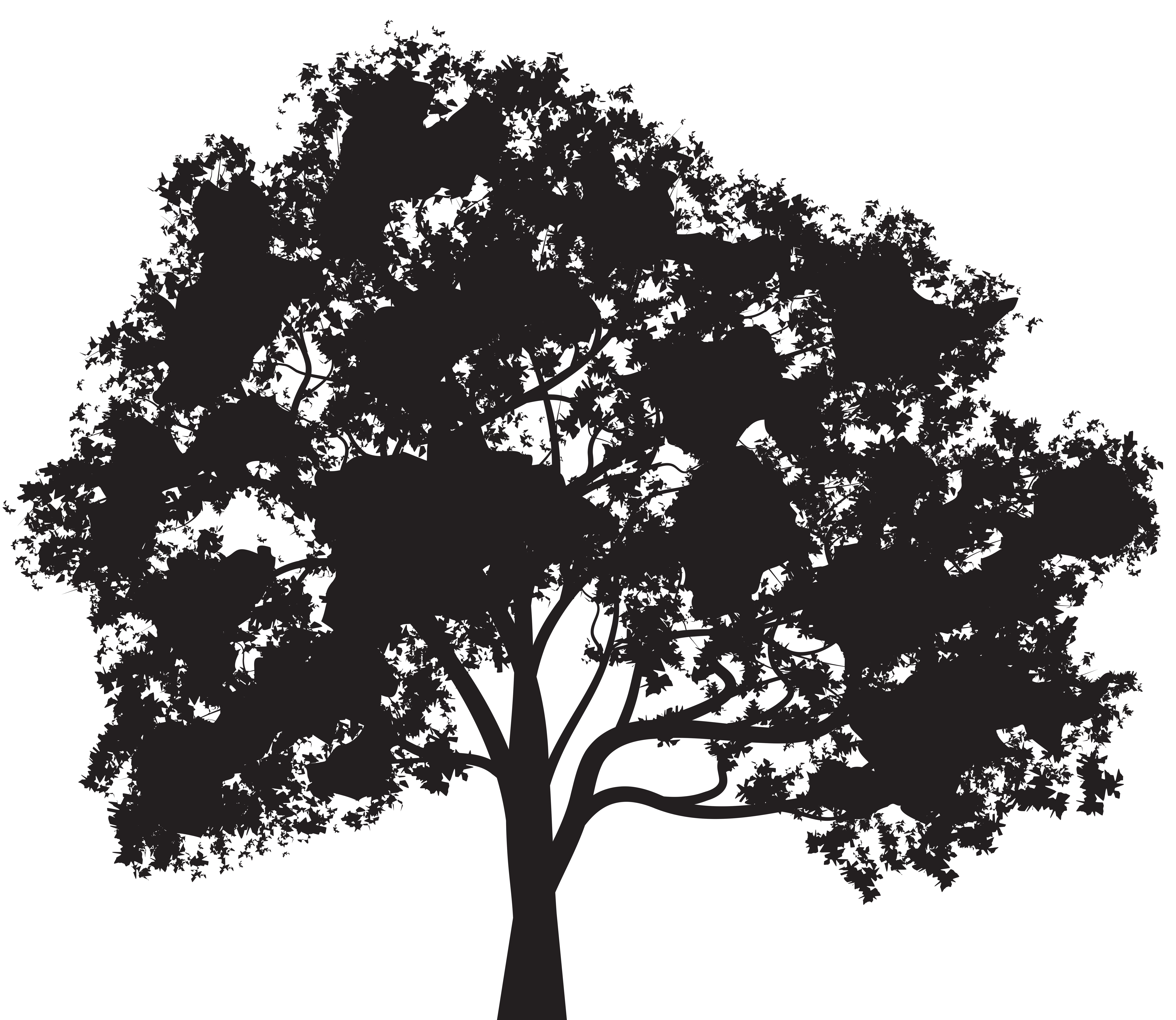 Tree png silhouette. Clip art image gallery