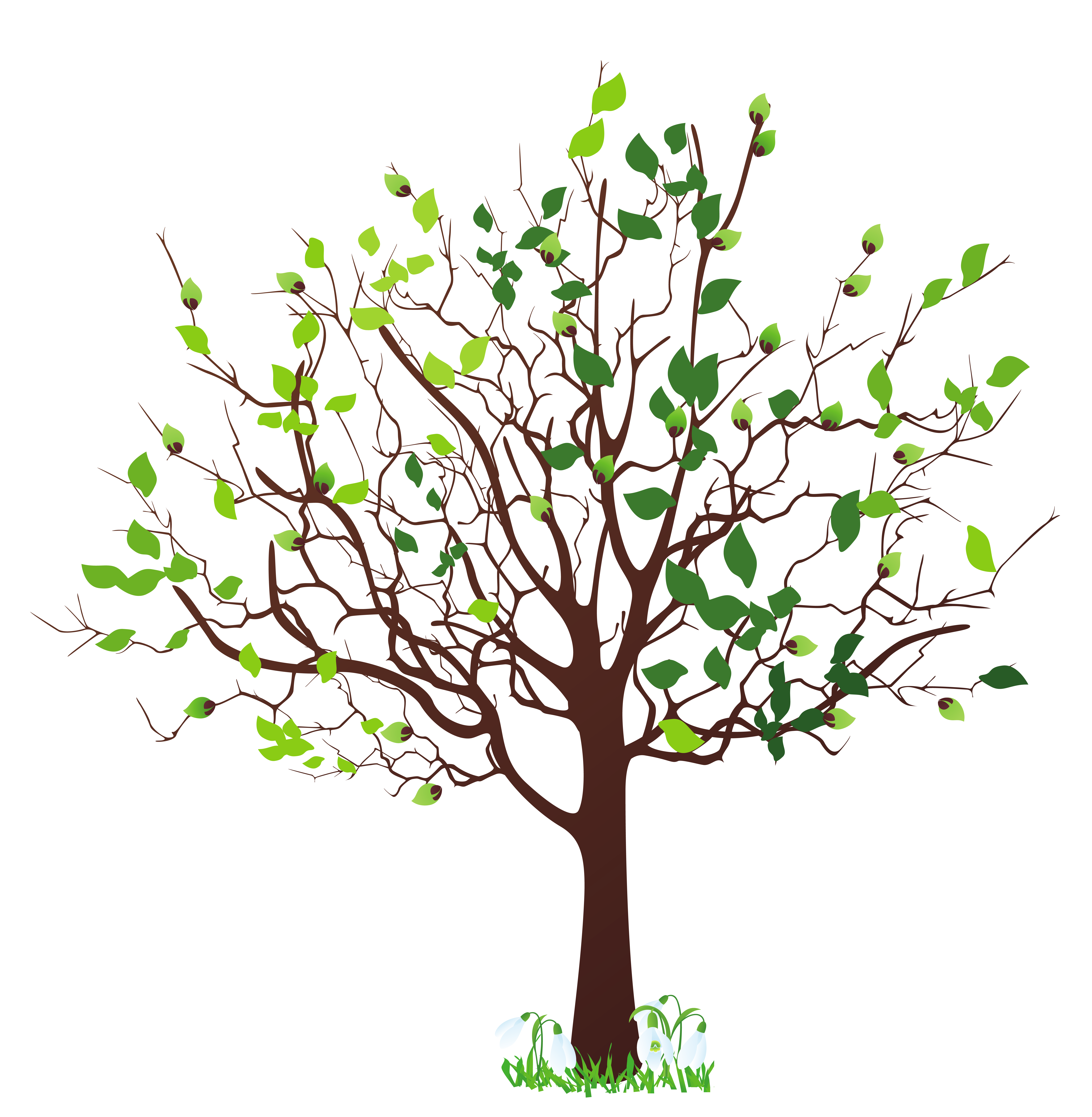 Tree png vector. Spring with snowdrops clipart