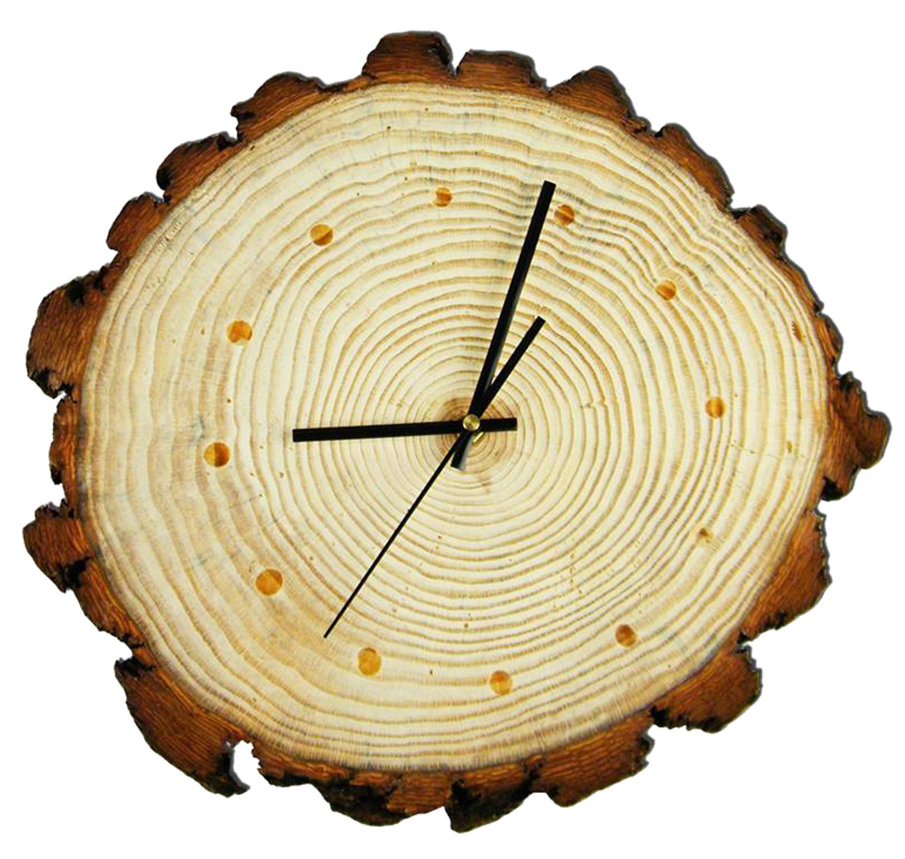 Tree ring png. Aastarxf ngad wood stump