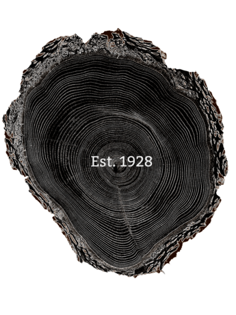 Tree ring png. Art