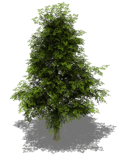 Tree sprite png. Collection v bleed s