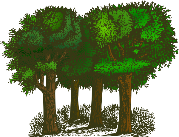 Trees clipart. Group of