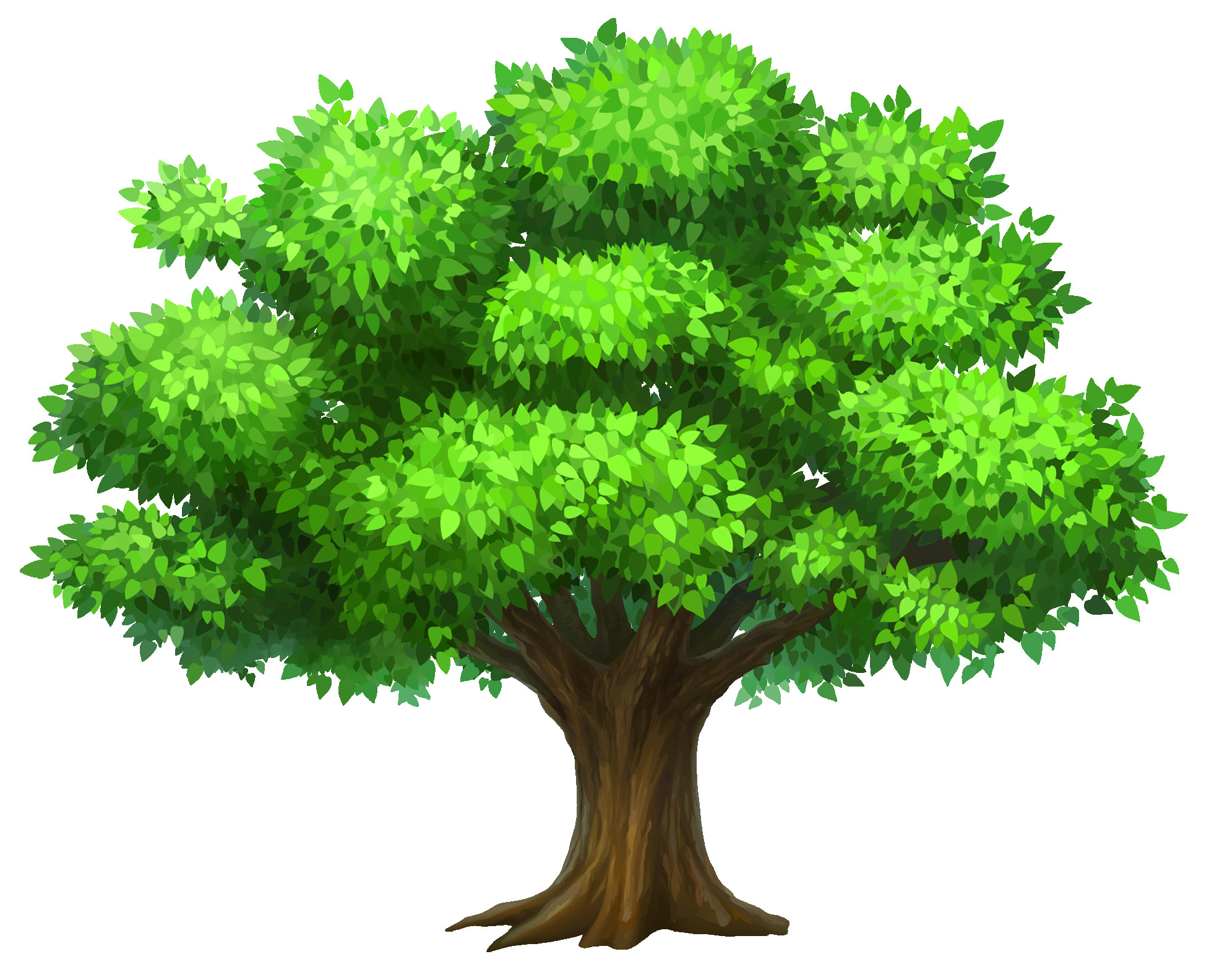 Trees clipart. Oack tree png picture