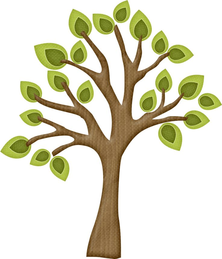Trees clipart branch. Best branches and