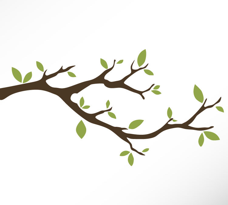 Trees clipart branch. Tree drawing at getdrawings