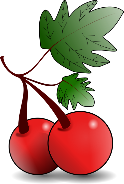 Trees clipart fruit. Tree cherry download drawing