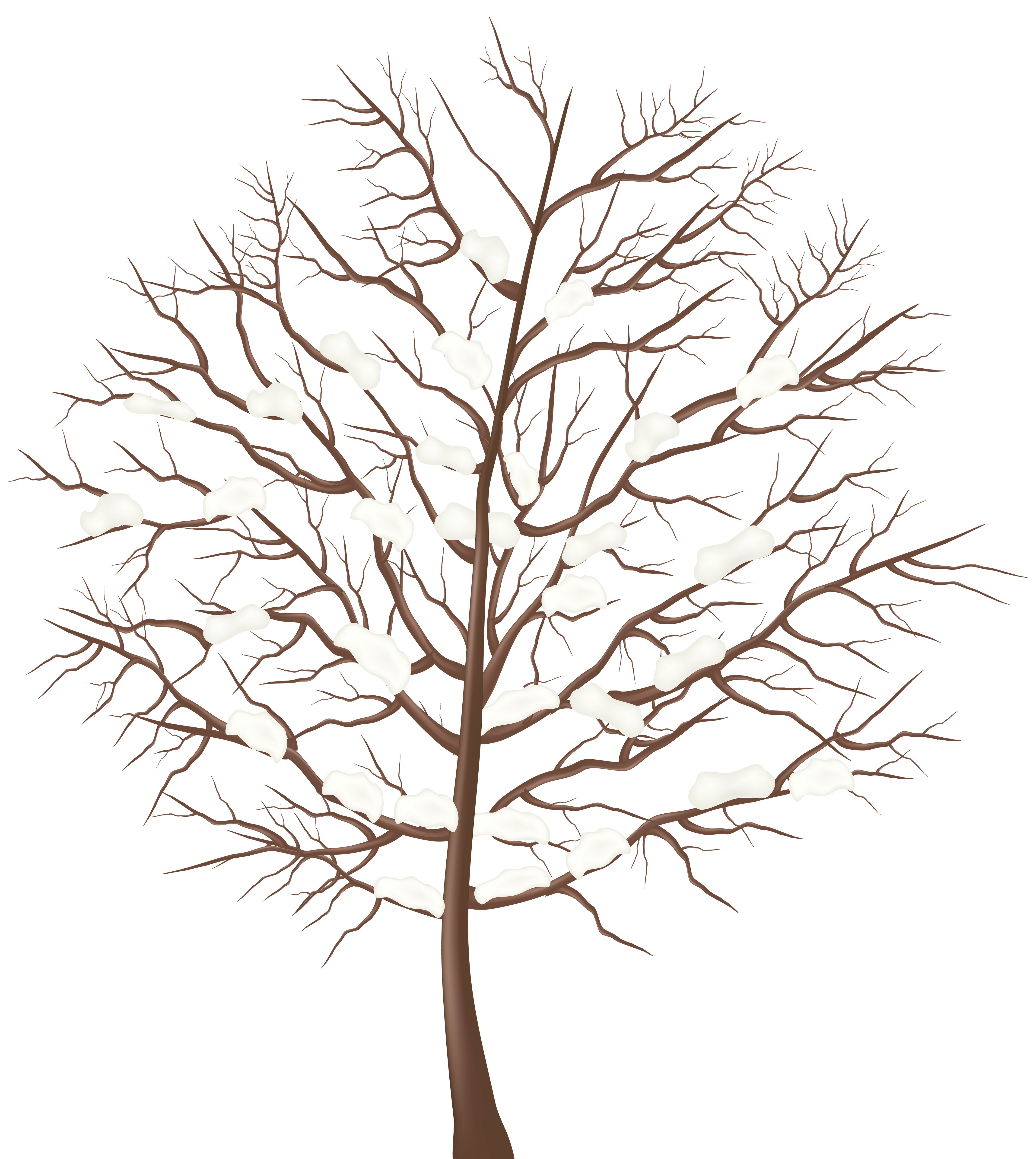 Trees clipart winter. Tree transparent png clip