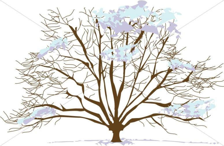 Trees clipart winter. Snowy tree nature