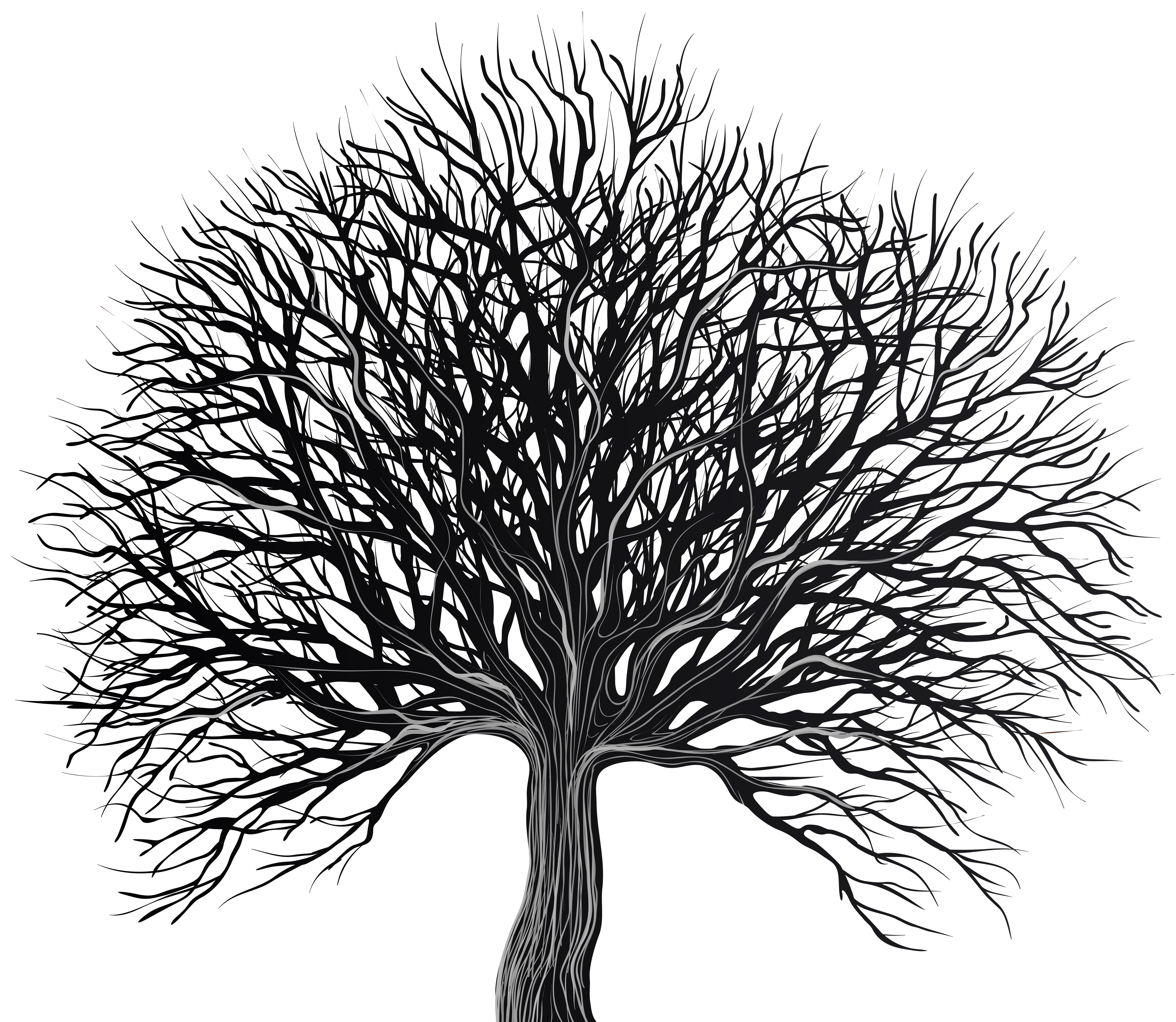 Trees png black and white. Art tree clip gallery