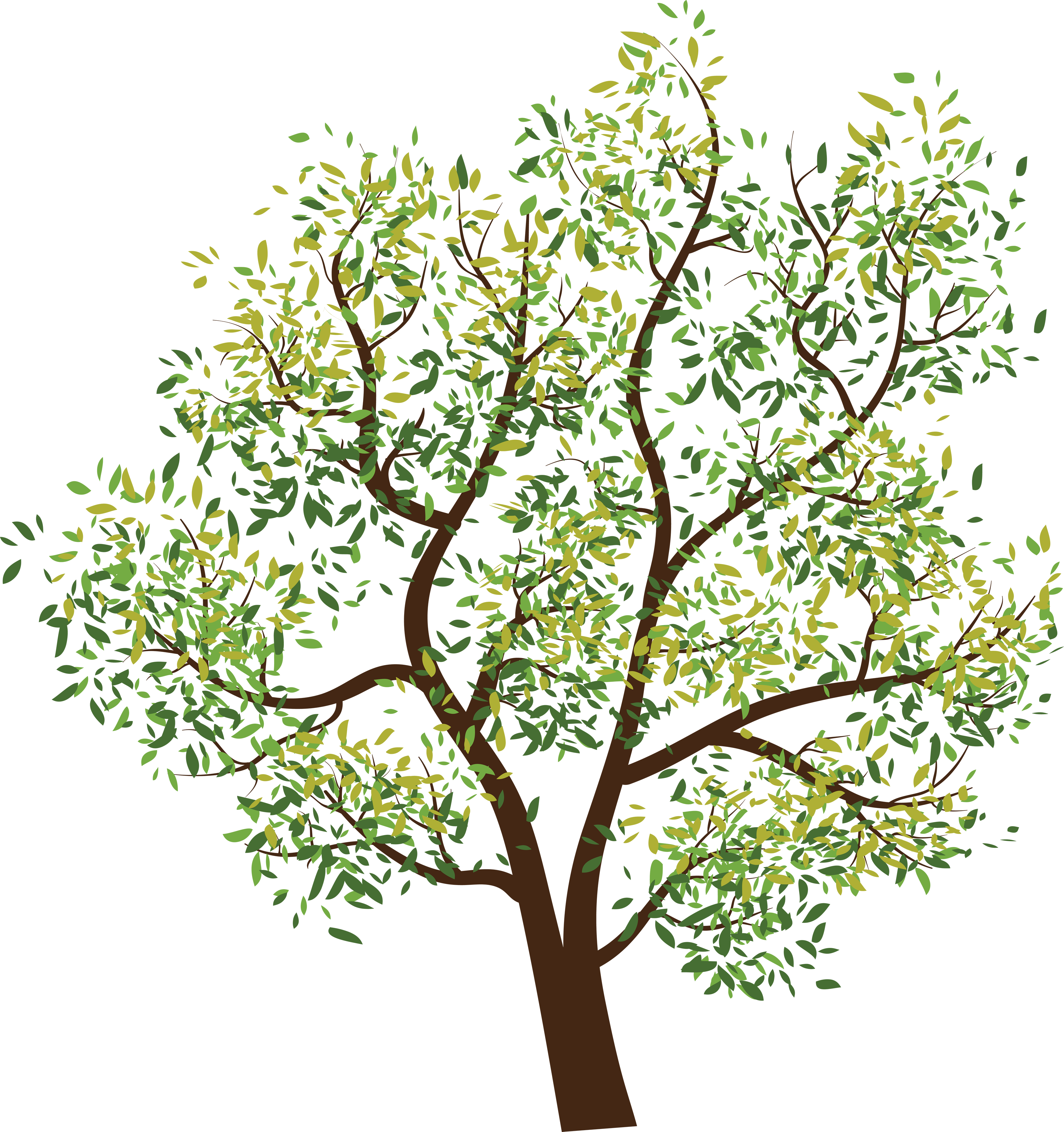 Trees png clipart. Tree image id photo