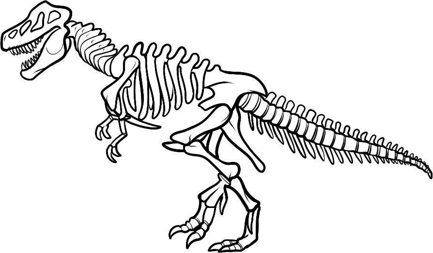 Trex clipart skeleton. T rex colouring pages
