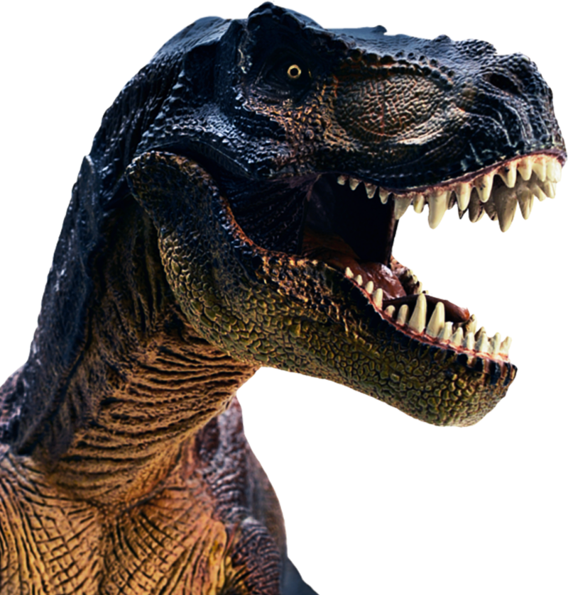 Trex png avatar. Download free tina headshot